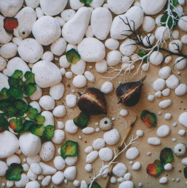 Gilardi, Noci di cocco, 2003