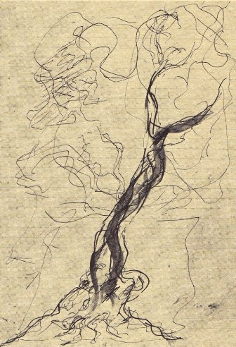 Spagnulo, Stromboli, 1980