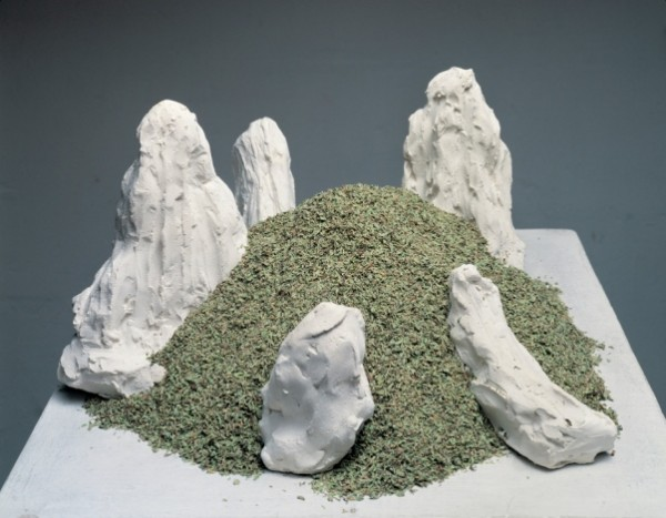 Arcangelo, Montagna di origano, 1992