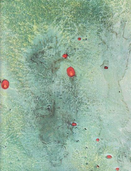Turcato, Superficie lunare, 1969, particolare
