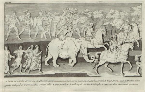 Columna Theodosiana, tav. VII