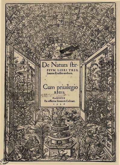 De Natura Stirpium Libri Tres, Simon de Colines, Paris 1536