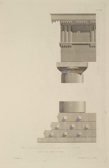 Dettagli di Tempio di Segesta