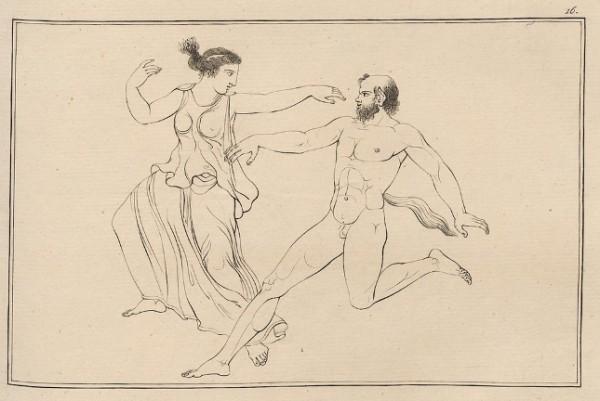 Hamilton, 1791, I, tav. 16
